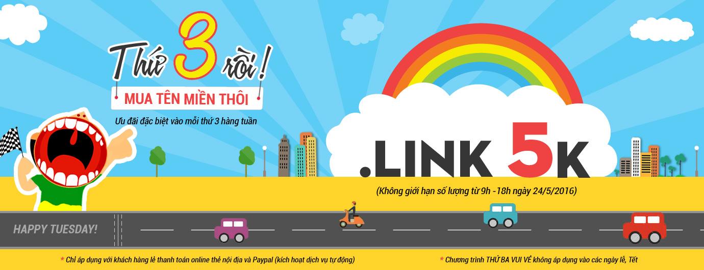 domain link 5k