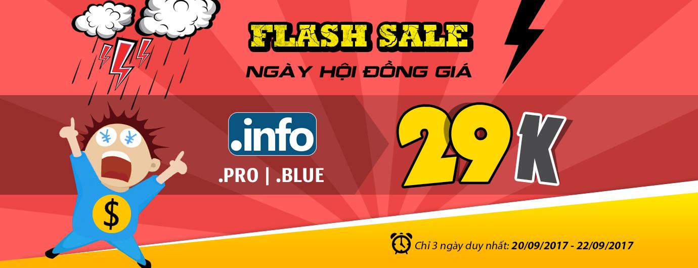 info-pro-blue-29k